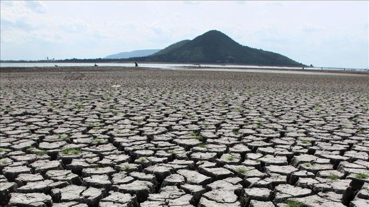 La escasez de agua pone en riesgo la producción de alimentos.