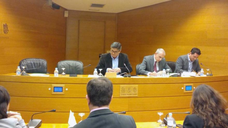 Un instante de la comisión parlamentaria que preside el socialista Alfred Boix y a la que no ha acudido la exalcaldesa de Valencia