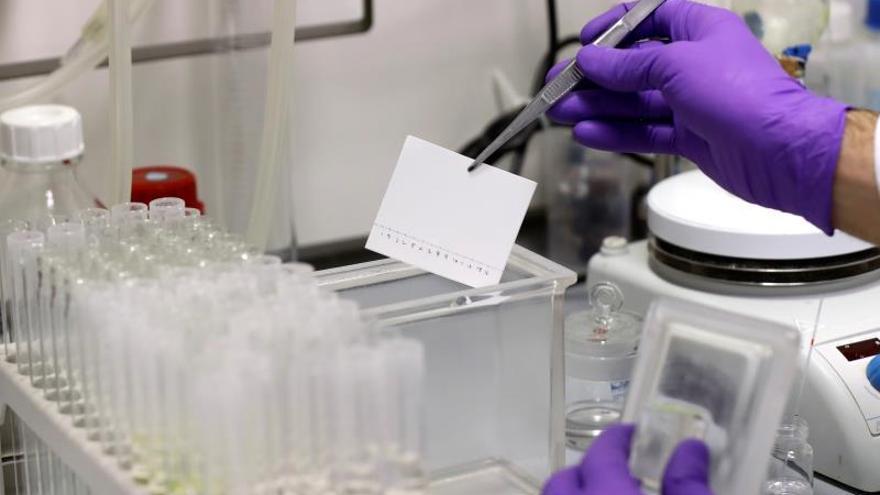 El CSIC trabaja en una vacuna del Covid-19 a partir del virus que erradicó la viruela