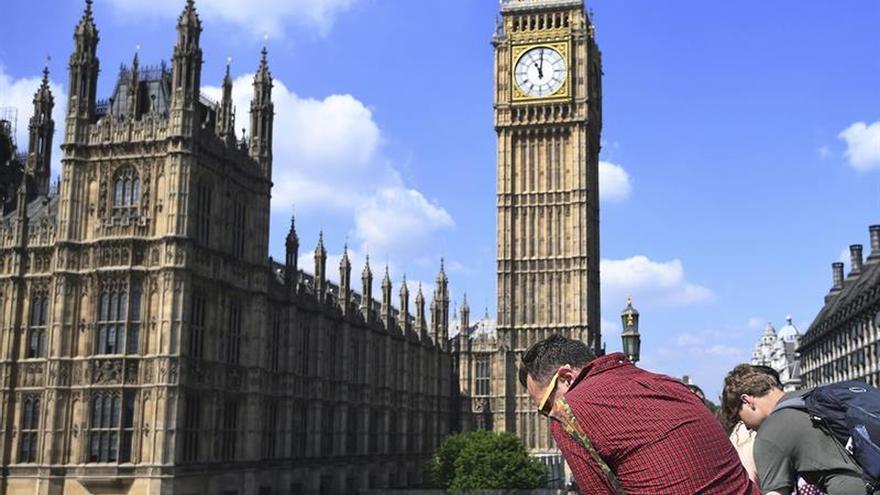 Westminster combate a los ratones tras prohibir a los diputados llevar sus gatos