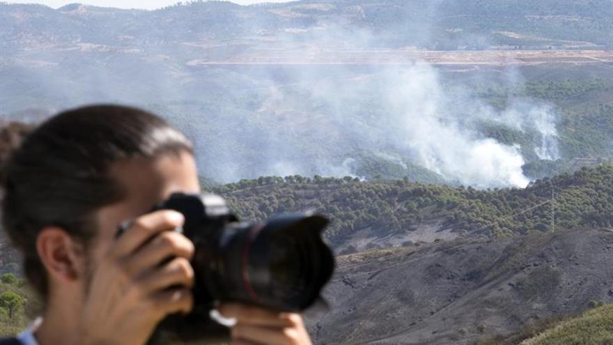 WWF exige cambios urgentes en política forestal para frenar grandes incendios