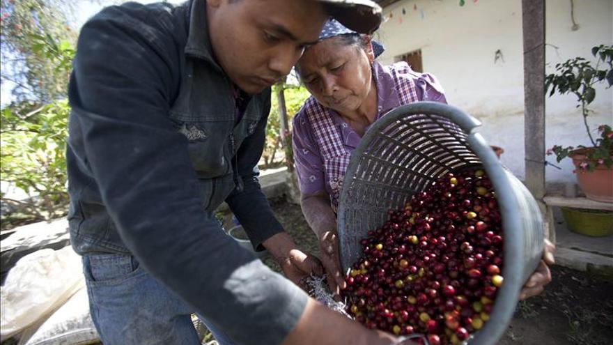 Café de Colombia, primera denominación de origen extranjera aceptada en Suiza
