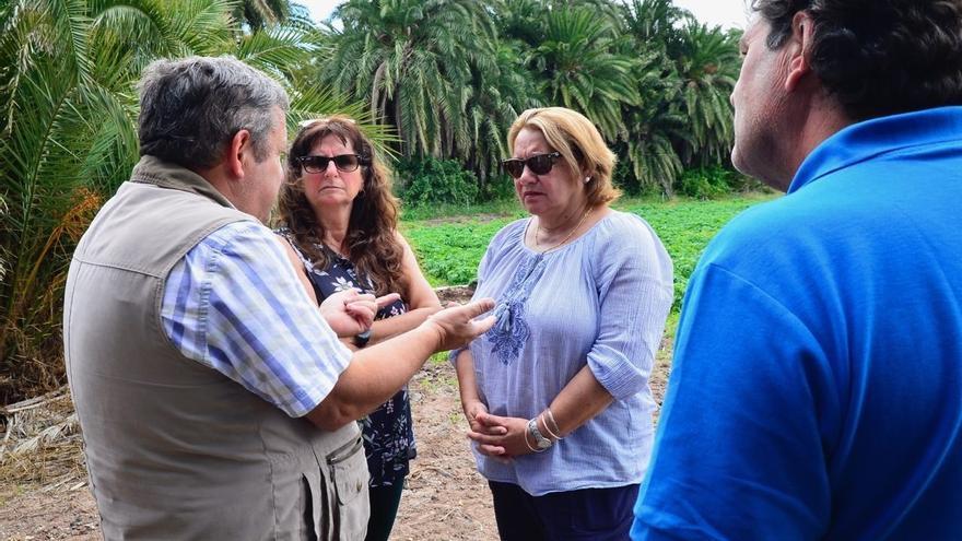 Meri Pita se reúne con la Coordinadora de Organizaciones de Agricultores y Ganaderos (COAG)