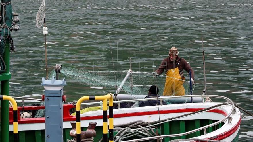 La Agencia de Pesca coordinó 20.000 inspecciones que detectaron 800 infracciones