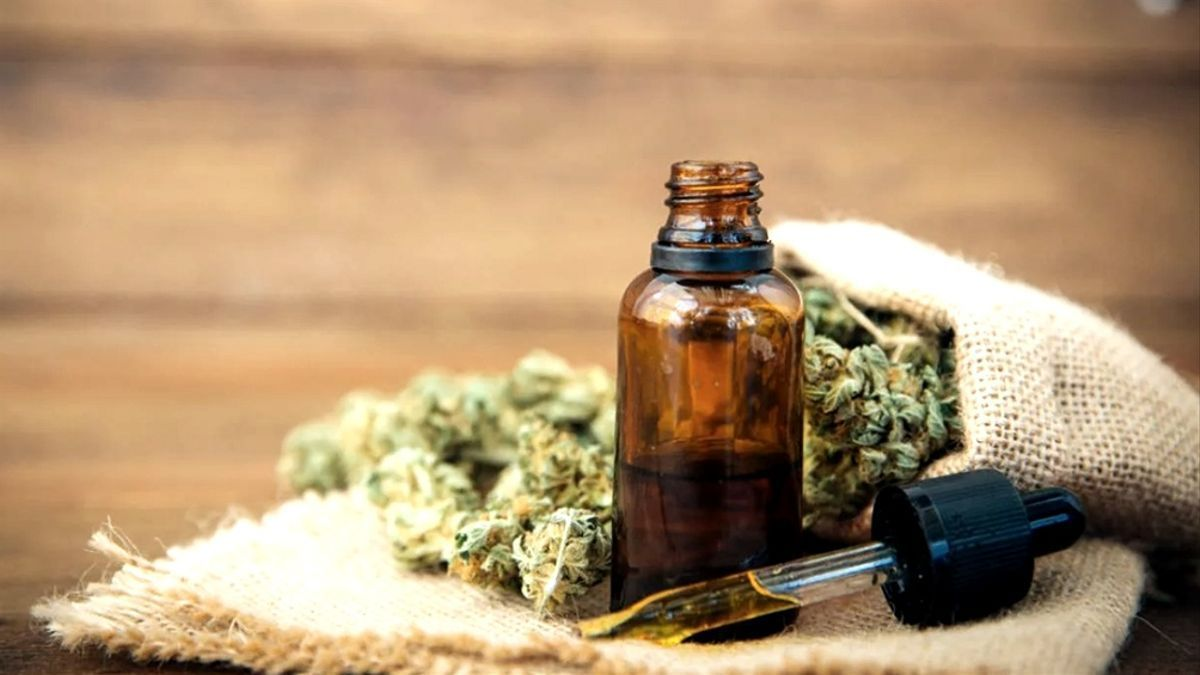 Una muestra de aceite de cannabis para uso medicinal.