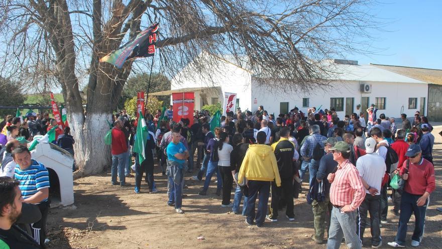 La Junta recurre la sentencia absolutoria a jornaleros acusados de ocupaciones de la finca Somonte