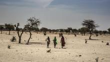 """Desplazados por los ataques de Boko Haram en el sur de Níger: """"Nos han destrozado la vida"""""""