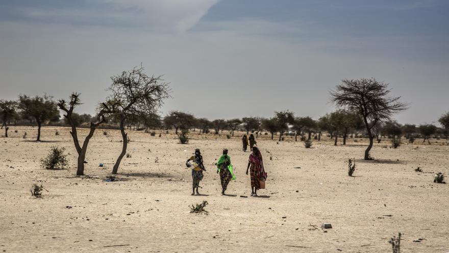 Durante años, la región de Diffa en el sureste de Níger, que limita con Nigeria y Chad, ha sufrido las consecuencias del conflicto armado entre Boko Haram y los ejércitos de la zona.