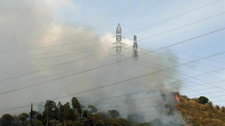 La superficie forestal afectada por el fuego baja un 35% en 2016 sobre década