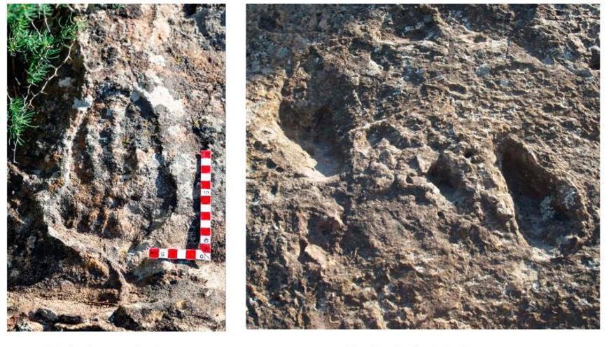 Hallan-huellas-australopiteco-Alora-Malaga_EDIIMA20190523_1027_4.jpg
