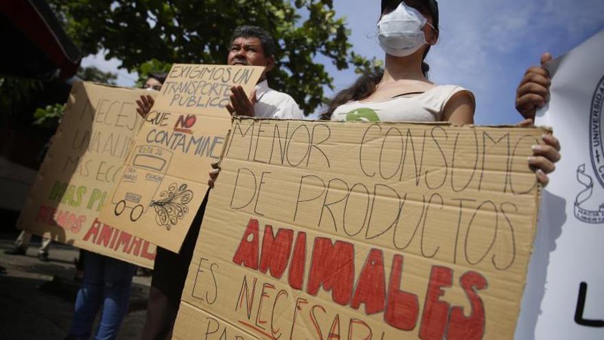 """Los estudiantes salvadoreños llaman a declarar una """"emergencia climática"""""""