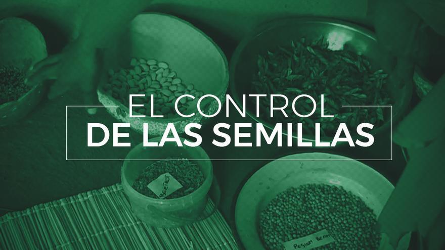 El control de las semillas: los obstáculos los pequeños agricultores.