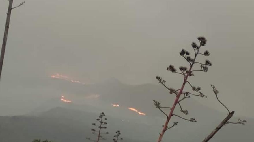 Declarado un incendio en Tasarte, Gran Canaria.