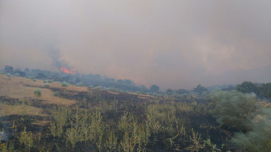 Incendio en Uceda Guadalajara | Consorcio Provincial de Bomberos de Guadalajara