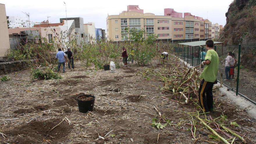 Los trabajos del taller de huertos urbanos de la capital han comenzado con la preparación del terreno.