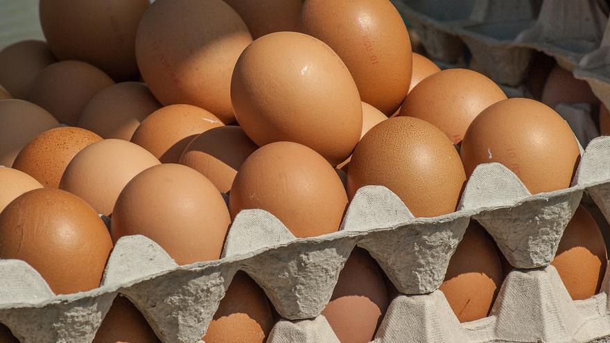 La Lonja Toledana de Fedeto, la primera que cotiza el 'huevo de suelo'