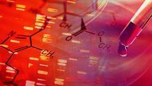 Fundación Banco Santander y CNIO, unidos para reforzar la investigación contra el cáncer en España