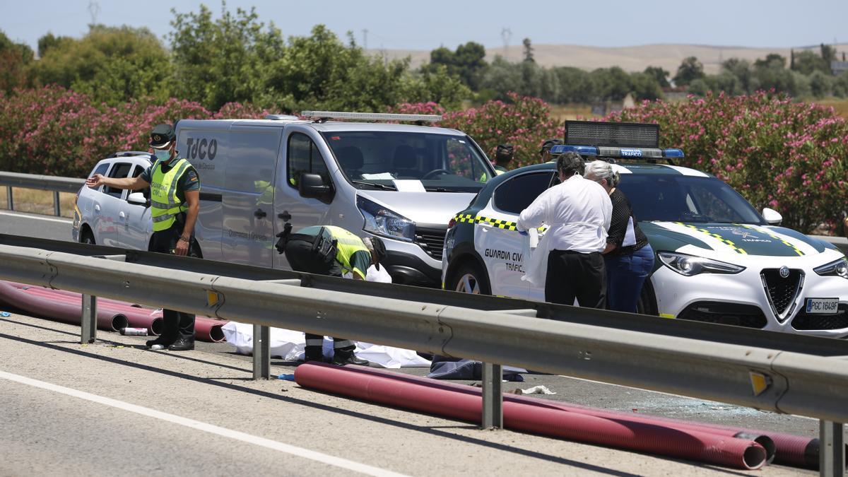 Forenses y peritos judiciales en el lugar del accidente