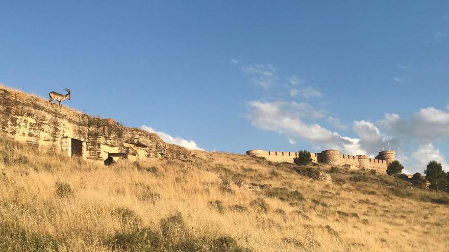 Albacete, tierra para la Arqueología