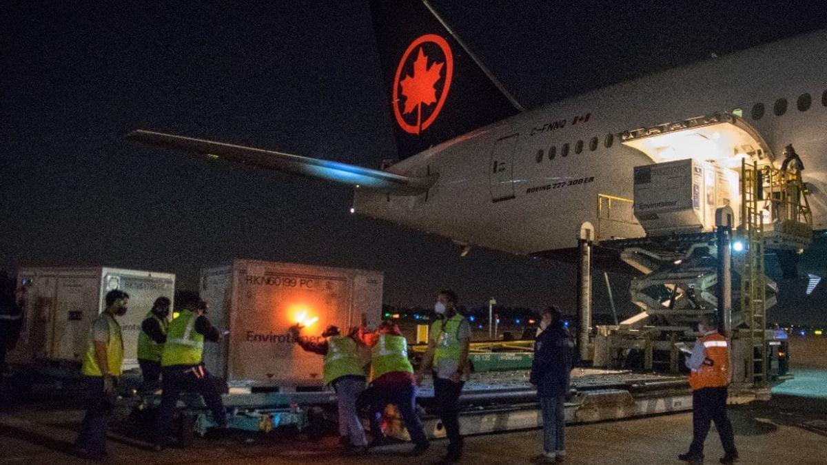 Las vacunas arribaron en un vuelo de la compañía canadiense Air Canada, bajo el número AC7251, que tocó pista en el aeropuerto Internacional de Ezeiza a las 19.51.