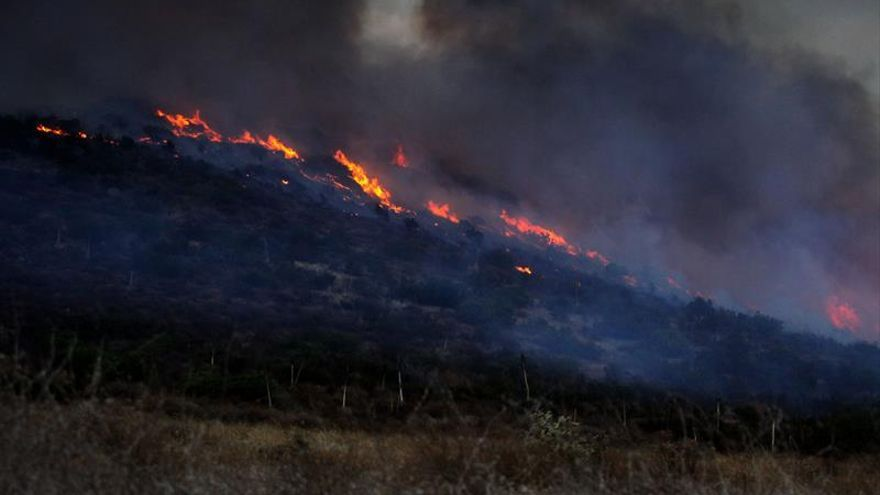 Declarado un incendio forestal en Benahavís (Málaga)
