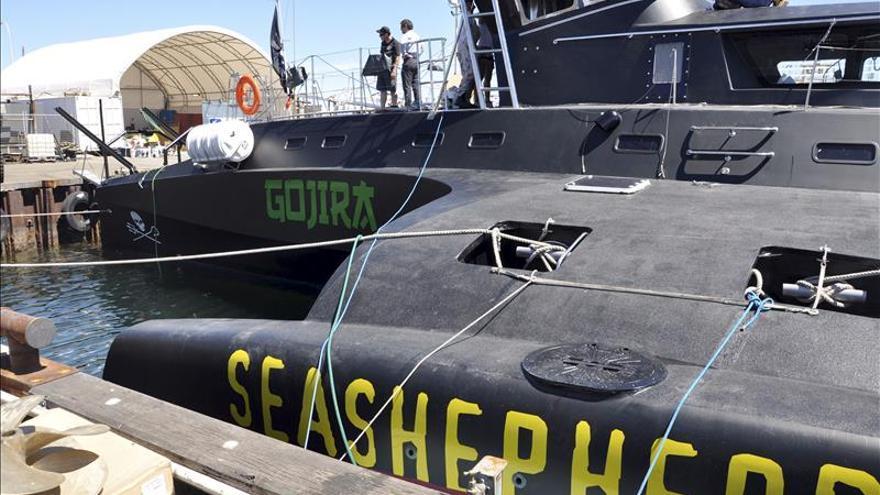 """Sea Shepherd reanuda su campaña contra la """"masacre"""" de ballenas en las Islas Feroe"""