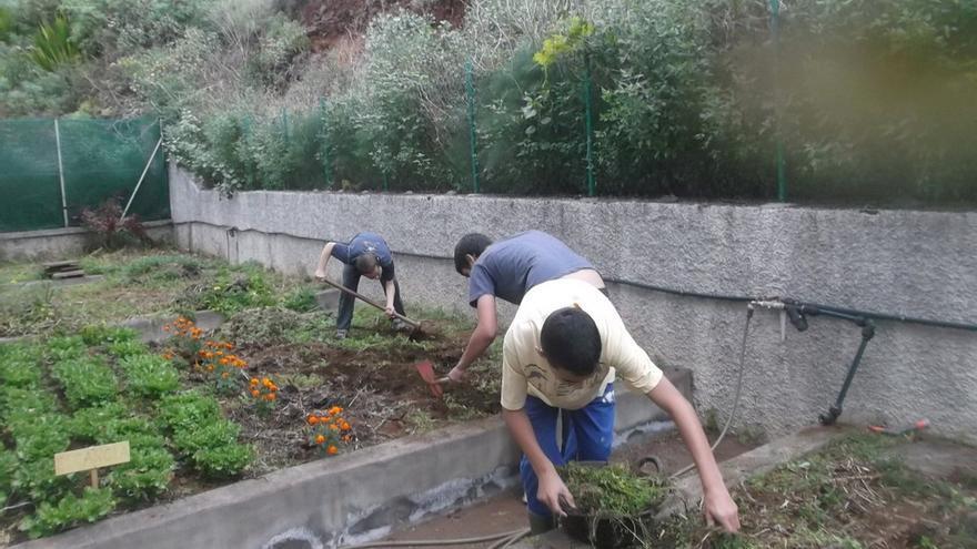 El alumnado desarrollan tareas que mejoran su calidad de vida.