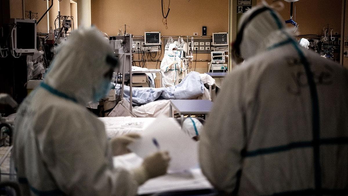 """""""Estamos en una meseta demasiado alta"""", sostiene la presidenta de la Sociedad Argentina de Virología, Lucía Cavallaro"""