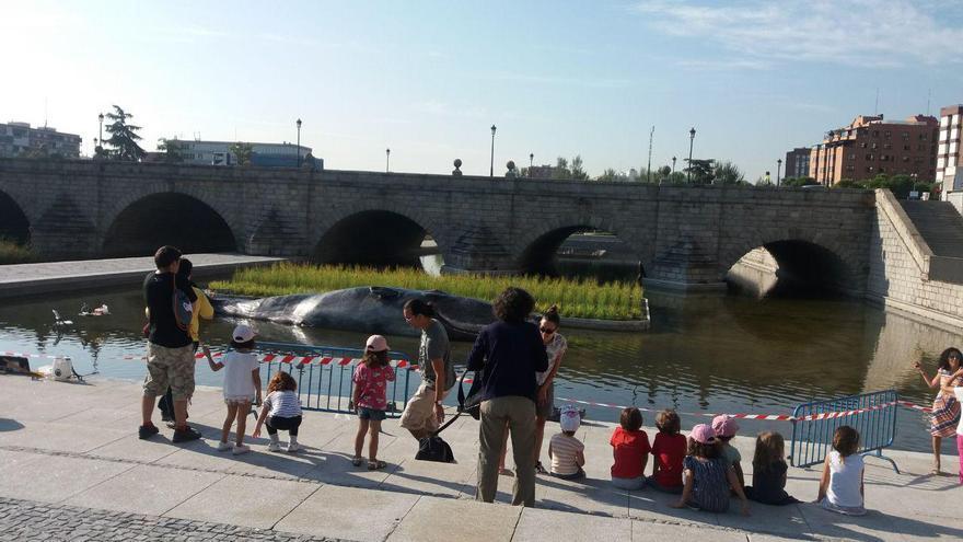 Los viandantes se acercan a observar la instalación artística en Madrid