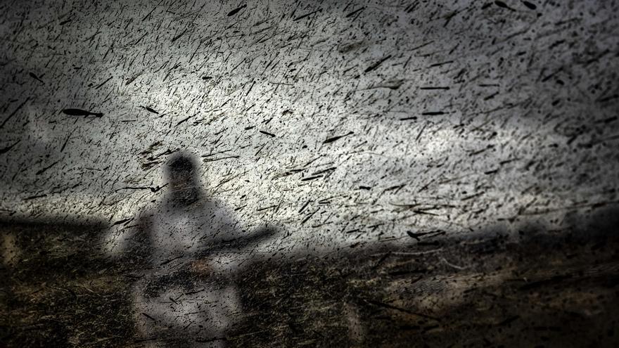 Los fotoperiodistas cántabros exponen sus mejores trabajos de 2018 en el Casyc Up