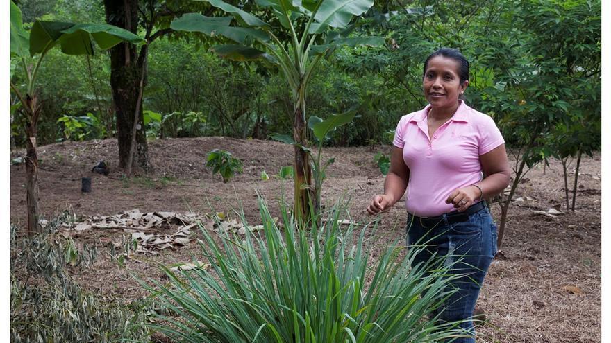 La diversificación de cultivos permite a Yahaira alimentar con mayor facilidad. Foto: Miguel Corazón / Ayuda en Acción