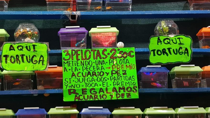 Uso de animales como premio en la Feria de Murcia