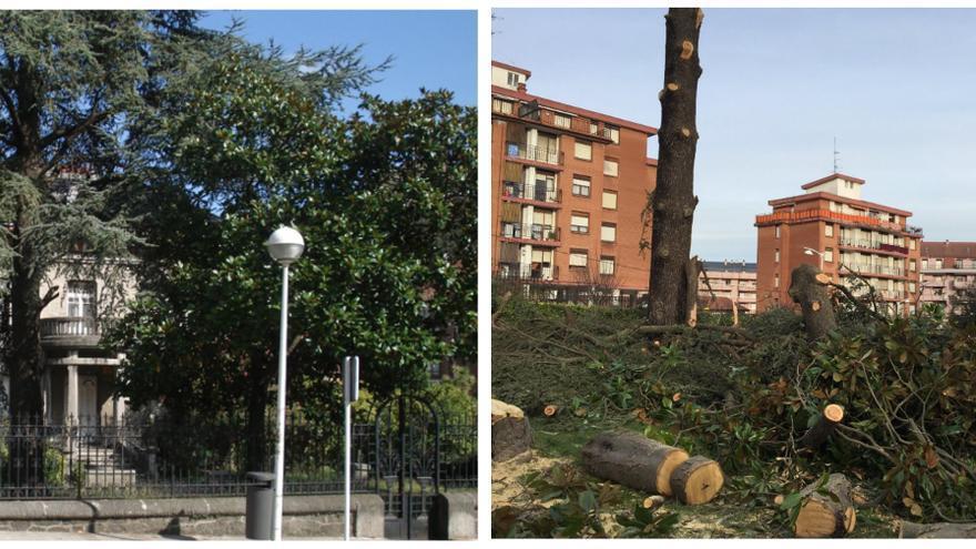 A la izquierda, vista parcial del jardín de la casa Garma en Castro Urdiales; en primer plano el cedro del Himalaya talado, y al lado, el magnolio, también talado. La tala (imagen de la derecha) se produjo sin permiso municipal, el 12 de enero de 2018.