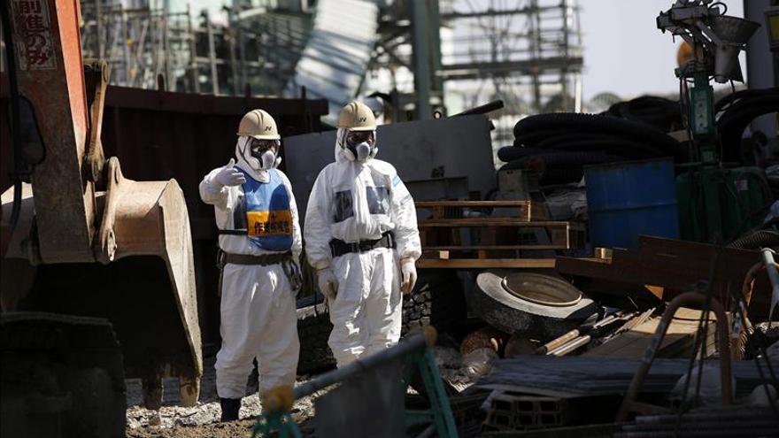 Ordenan sellar el suelo de Fukushima para frenar la infiltración de agua