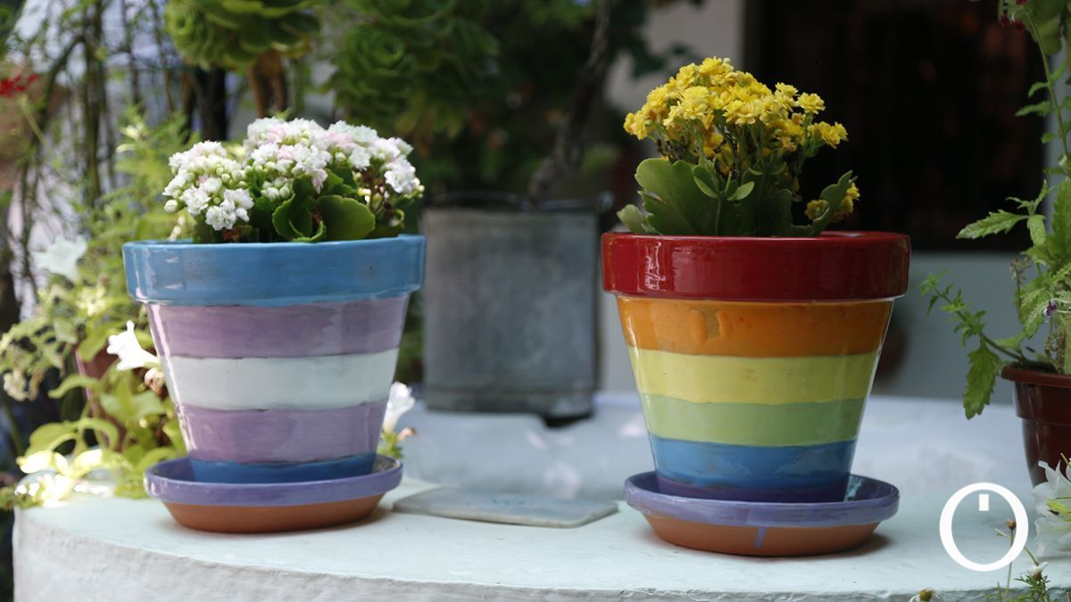 Colores arcoíris en macetas