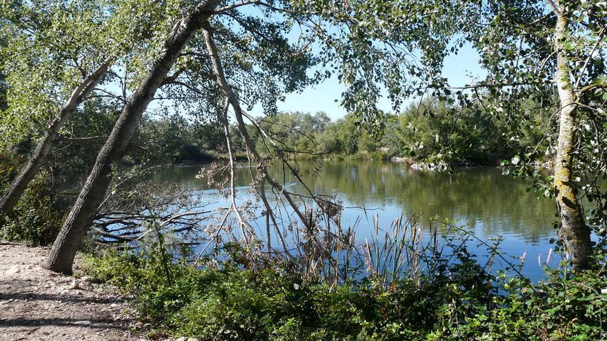 Una de las lagunas de la Reserva FOTO: Teresa Sánchez Garzón
