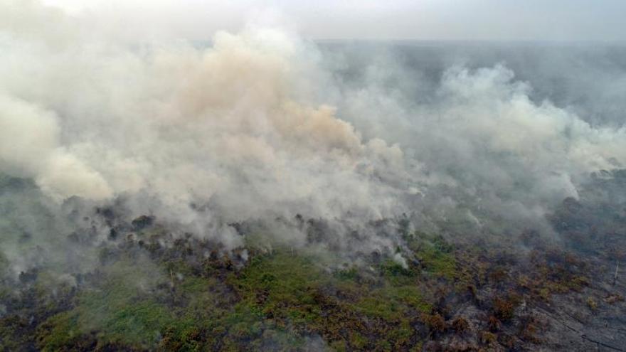 El humo de los incendios ahoga al Sudeste Asiático