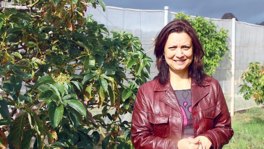 La consejera de Desarrollo del Territorio, Ventura del Carmen Rodríguez