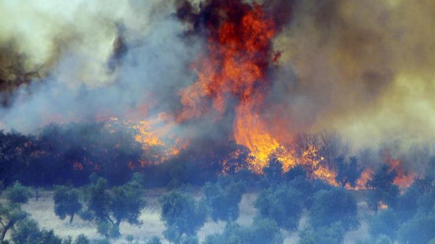 Desatado un incendio forestal en el Parque Natural Arribes de Salamanca