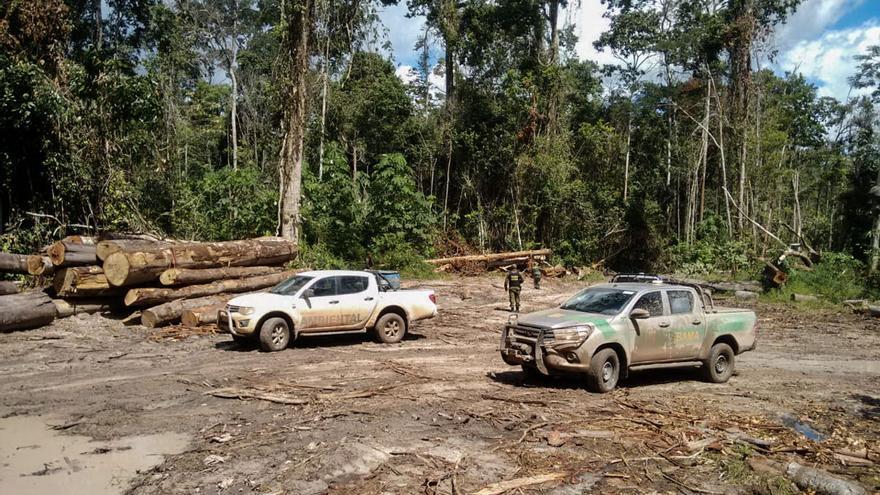 Inspección de los agentes del Ibama en una explotación maderera en el Amazonas.