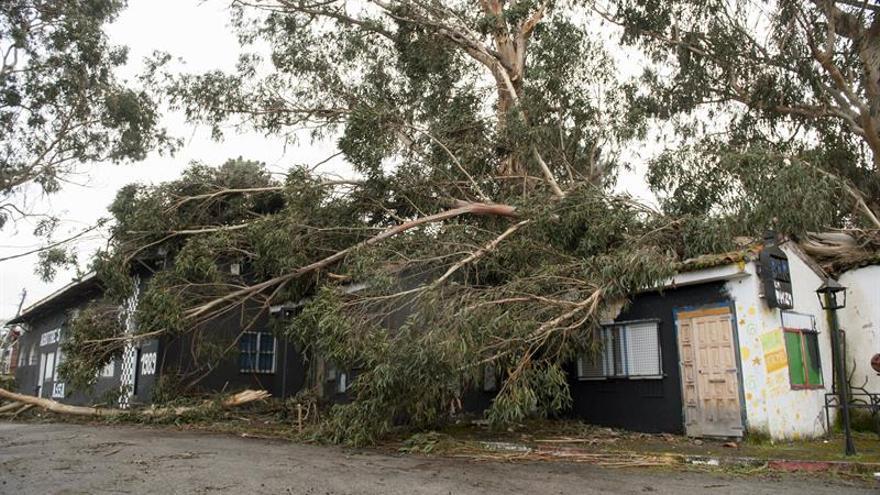 Cinco heridos y más de 800 incidentes a causa del temporal en Galicia
