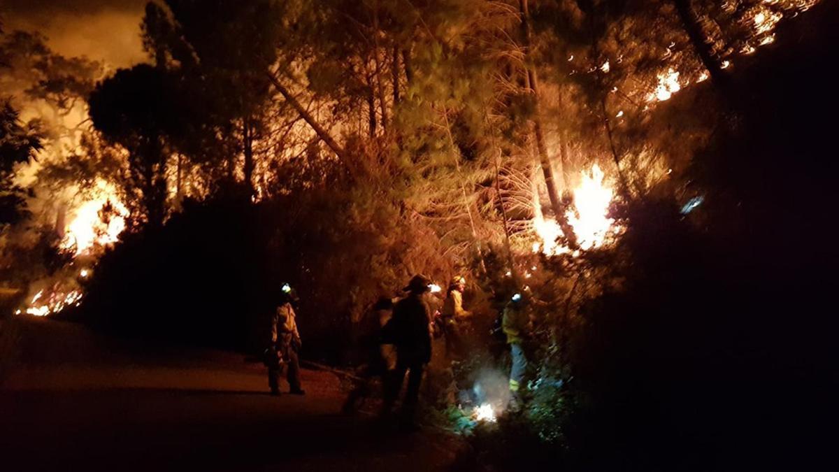 El incendio forestal declarado en Sierra Bermeja, en Málaga