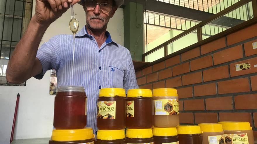 Salvador Gonçalves, apicultor y presidente de la Asociación de Apicultores de Cruz Alta, Apicruz.