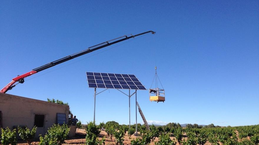Placa solar en viñedo / ASIF