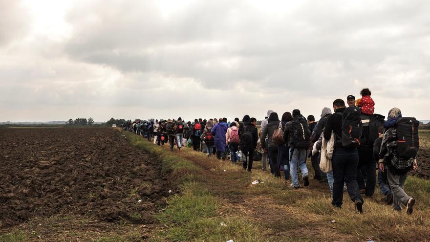 Refugiados y migrantes caminan hacia la estación de tren de Tovarnik, Croacia, donde esperan subir a un autobús que les lleve a Austria. Según los datos recogidos por MSF a mediados de mes, un promedio de 5.000 personas cruzaban por la zona cada día. Fotografía: Achilleas Zavallis