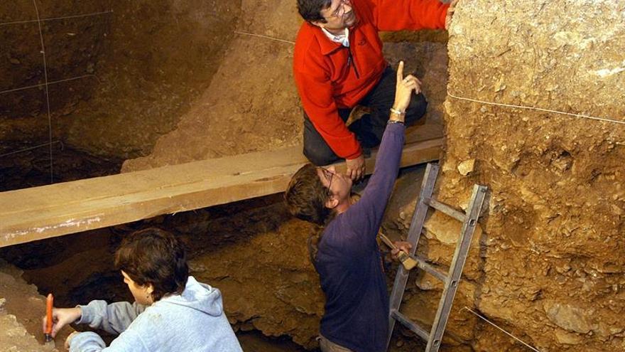 Arqueólogos localizan otro diente de leche de un niño del Neandertal en Moià