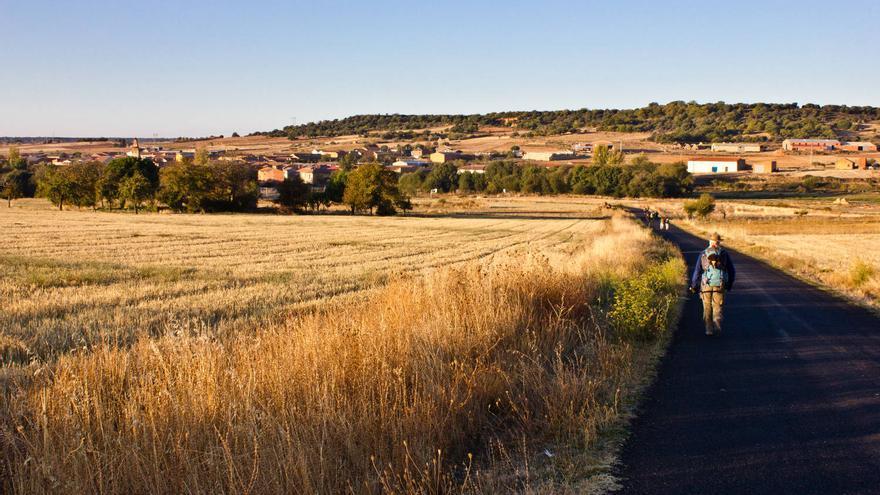 Campos de cereal en Santibáñez de Valdeiglesias, en el Camino de Santiago.