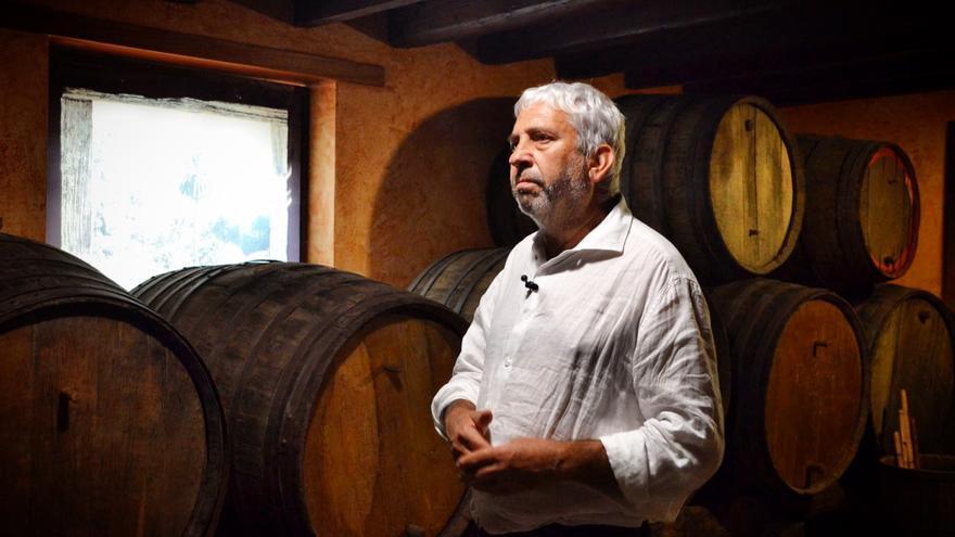 Los viticultores de Gran Canaria esperan una buena cosecha que les saque del 90% de pérdidas por la crisis del coronavirus