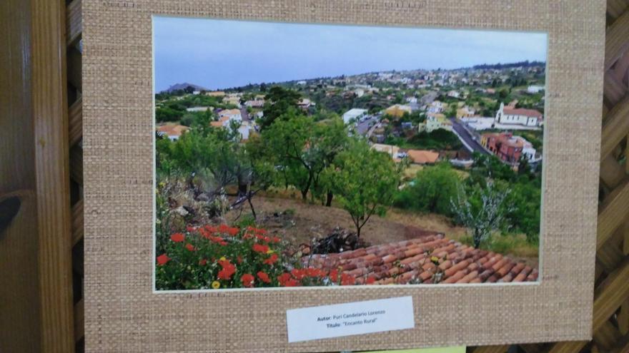 Primer premio del concurso 'Puntagorda, Encanto Rural'. Tiítulo: Encanto Rural. Autora: Puri Candelario.