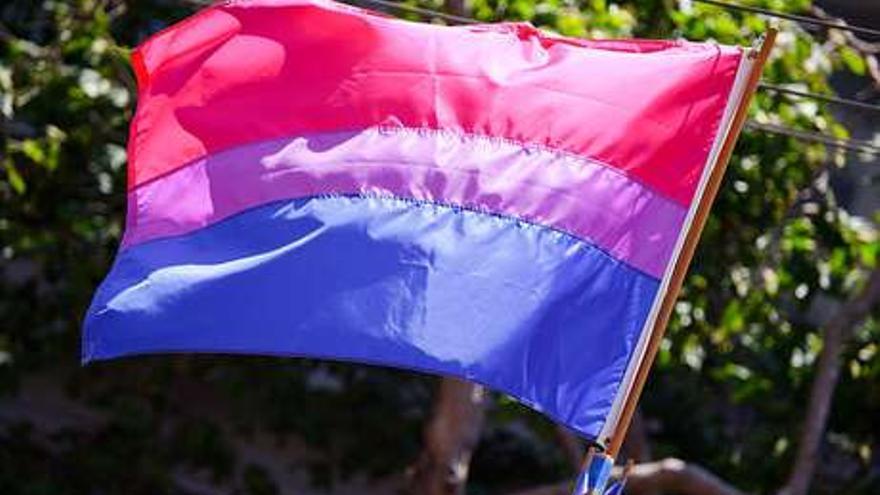 Bandera bisexual / FELGTB